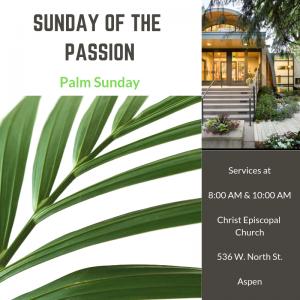 Sunday of the Passion: Palm Sunday @ Christ Episcopal Church